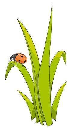 Bug clipart gress Safari Pinterest Minus and z_p
