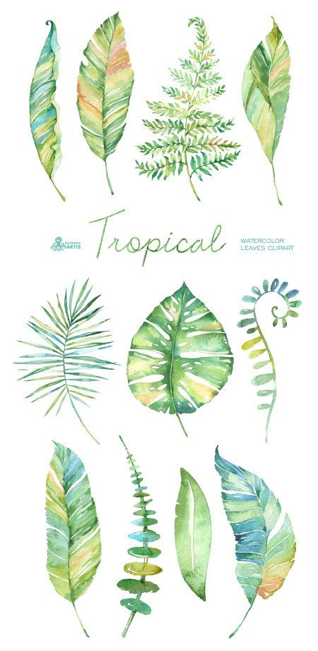 Herbs clipart teapot Clipart Pinterest ideas Tropical on