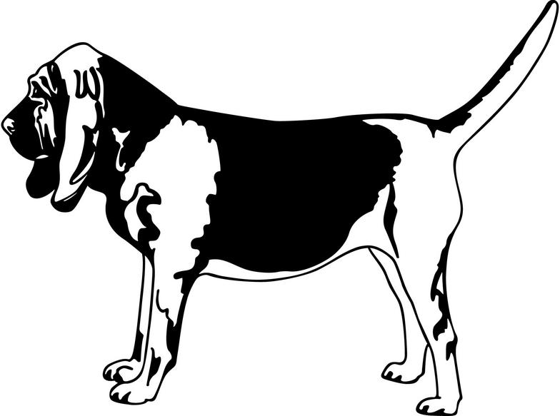 Bloodhound clipart coon dog Clipart Panda Clipart bloodhound%20clipart Images