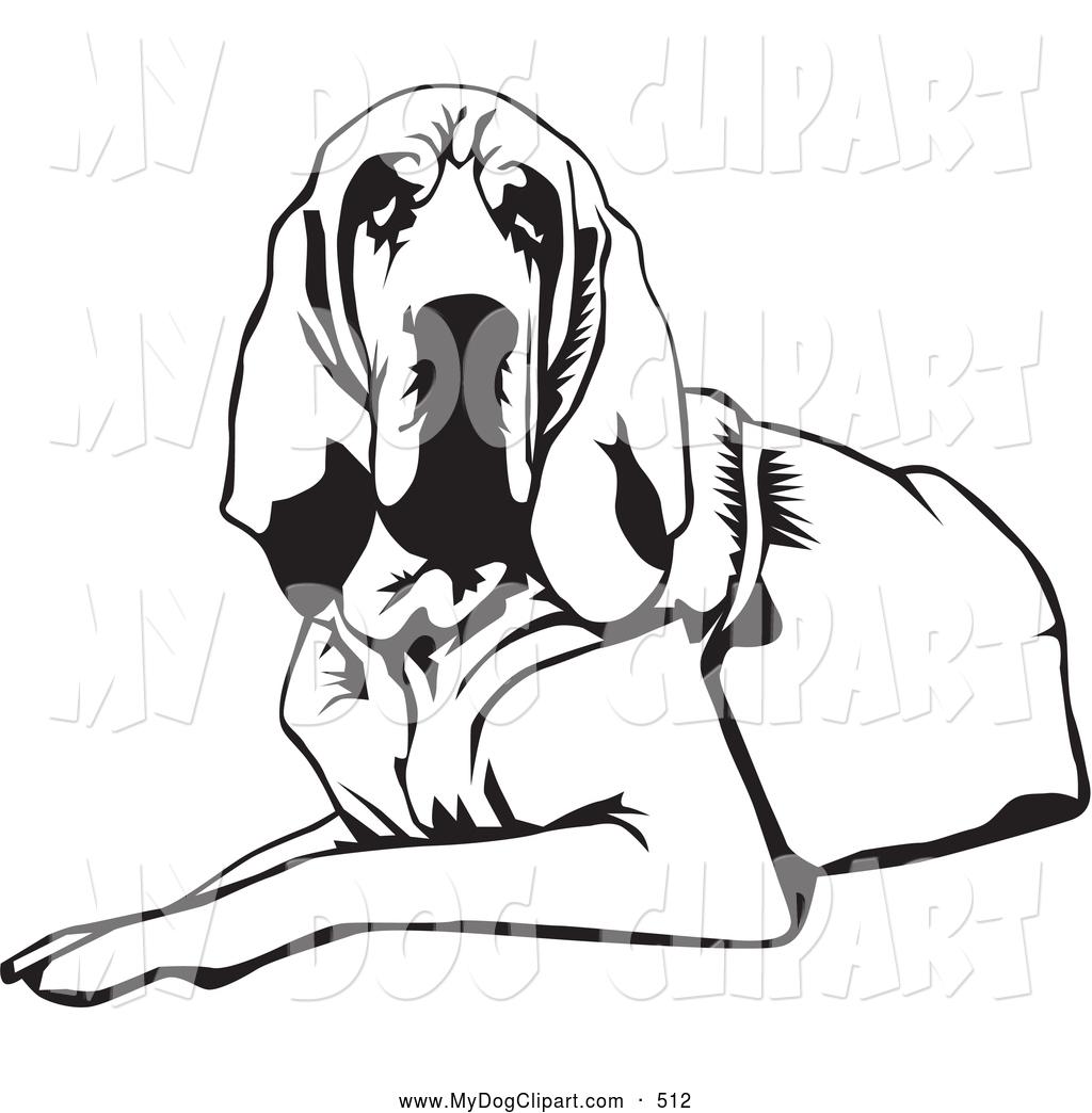 Bloodhound clipart labrador Bloodhound or or Hound a