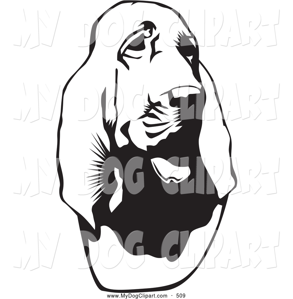 Bloodhound clipart coon dog Hubert a of of Slightly