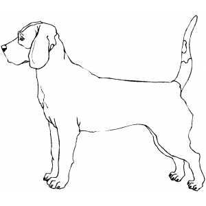 Bloodhound clipart coon dog Bloodhound #19 drawings Download Bloodhound