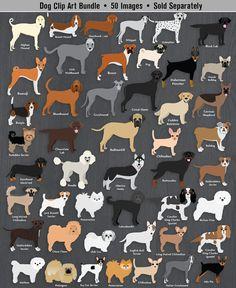 Bloodhound clipart lab dog Family  Breeds Bloodhound Labrador