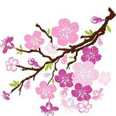 Blossom clipart black cherry Of  Clip cherry Royalty