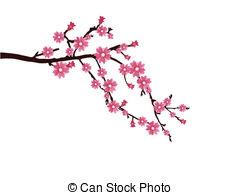 Sakura Blossom clipart With Cherry  cherry vector