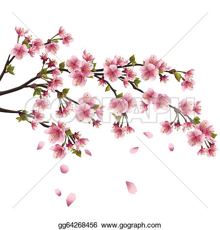 Cherry Blossom clipart Blossom blossom background Japanese white