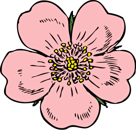 Blossom clipart #15