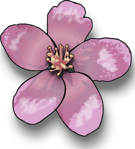 Blossom clipart #7