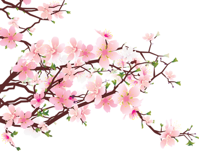 Blossom clipart #11