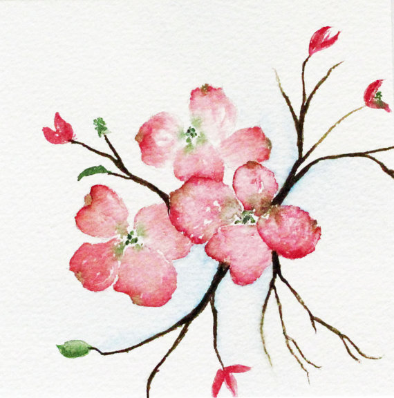 Blossom clipart dogwood tree Watercolor tree  pink and