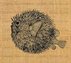 Blowfish clipart stingrays Sheet 1 Collage Fish Swellfish