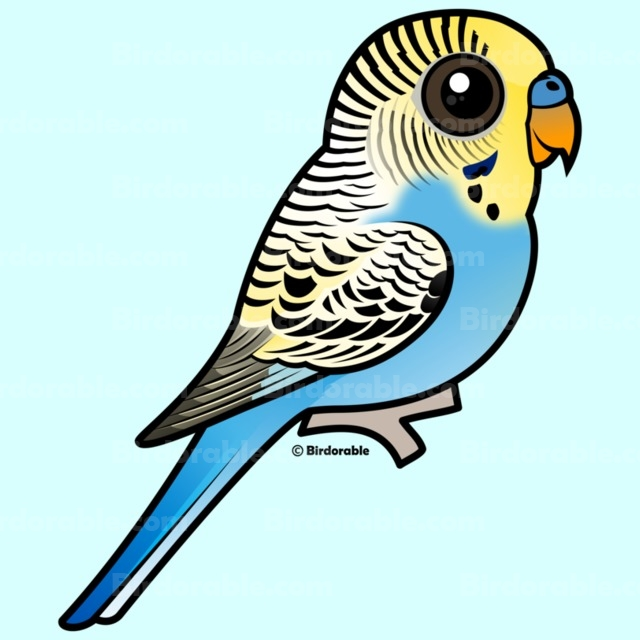 Budgie clipart blue and yellow Cute & Blue Blue Shirts
