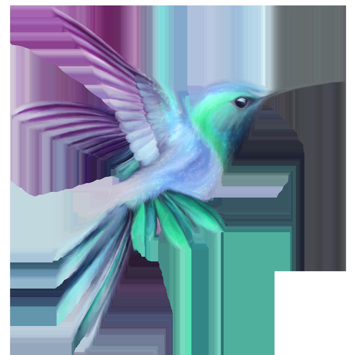 Blue clipart hummingbird  Art Image Hummingbird full