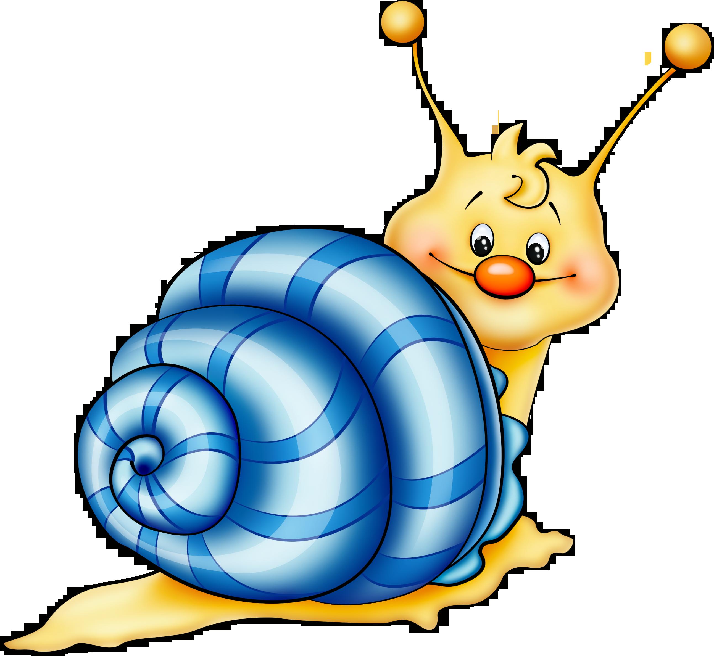 Snail clipart caterpillar Blue animals Cartoon homepage snail