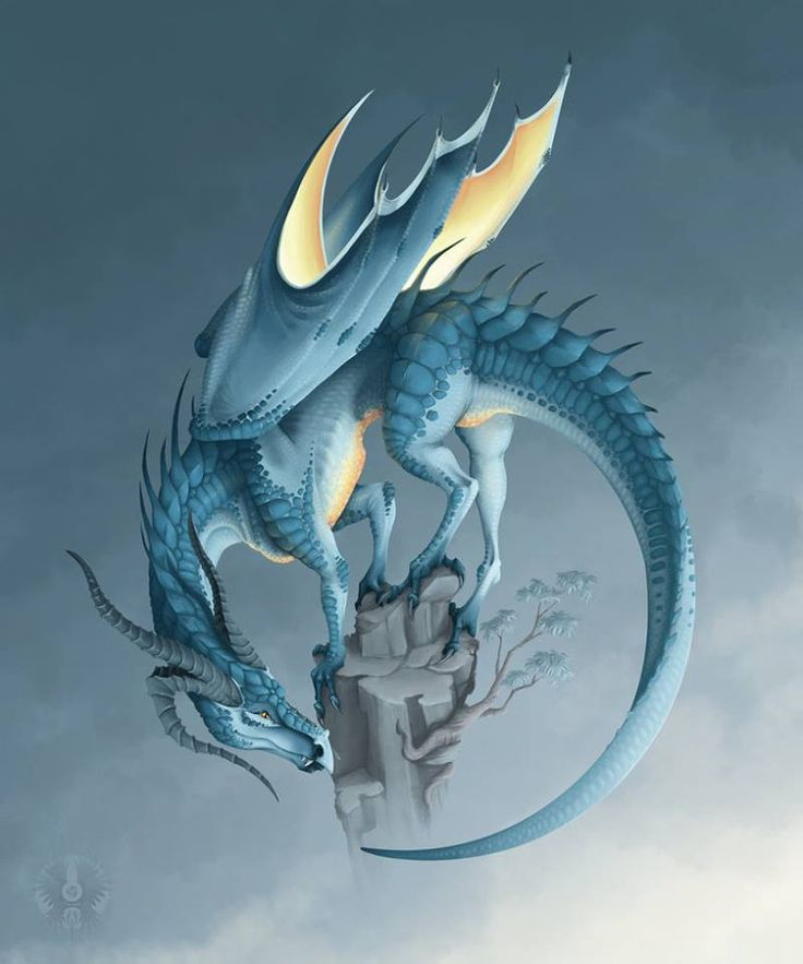 Blue Dragon clipart simple On Dragons & of Wood