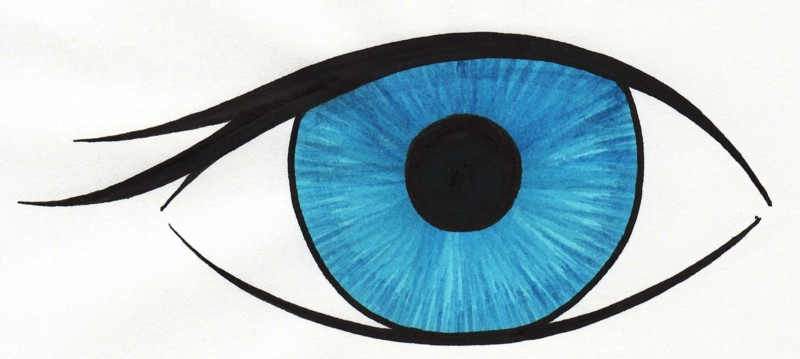 Eyeball clipart drawn WikiClipArt eyes eyes Blue Blue
