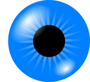 Blue Eyes clipart #3