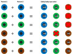 Blue Eyes clipart baby eye According About of chart eye