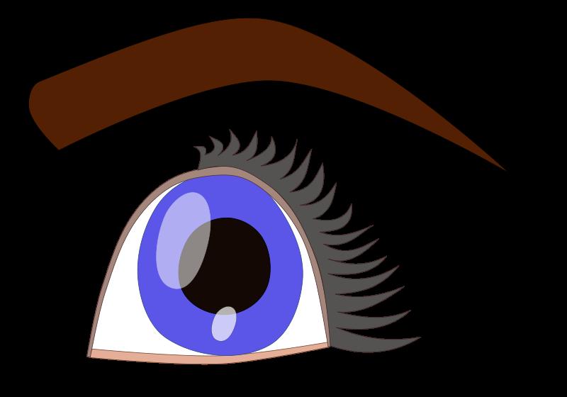 Blue Eyes clipart eyeball Art Eye Eyeball Download Clip