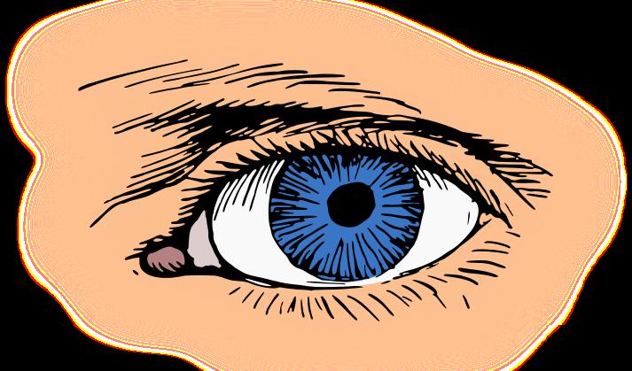 Blue Eyes clipart eyeball Clip Clip Public Free Blue