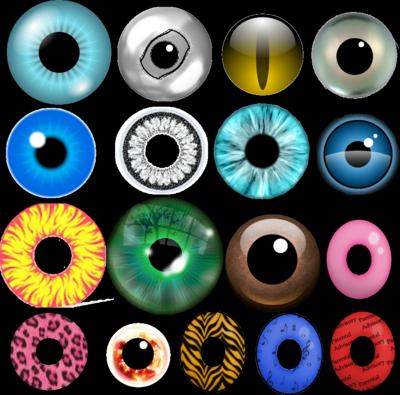 Blue Eyes clipart google eyes Iris vector vector  полимерная