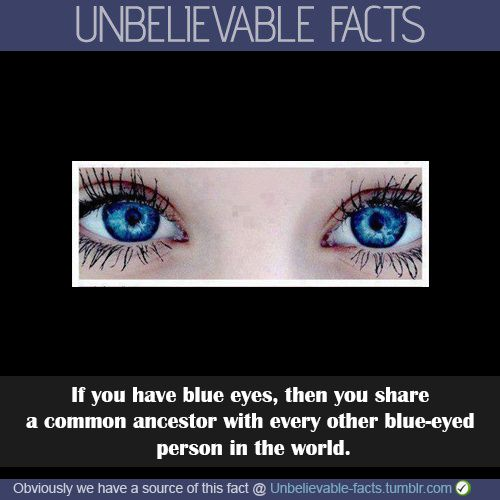 Blue Eyes clipart one eye Best on 20+ Green eyes