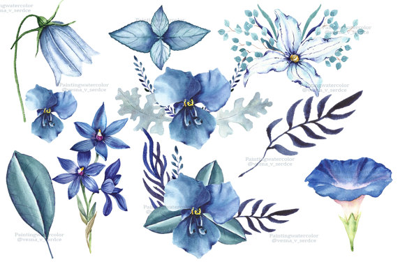 Blue Flower clipart anemone flower Summer a digital flower flowers