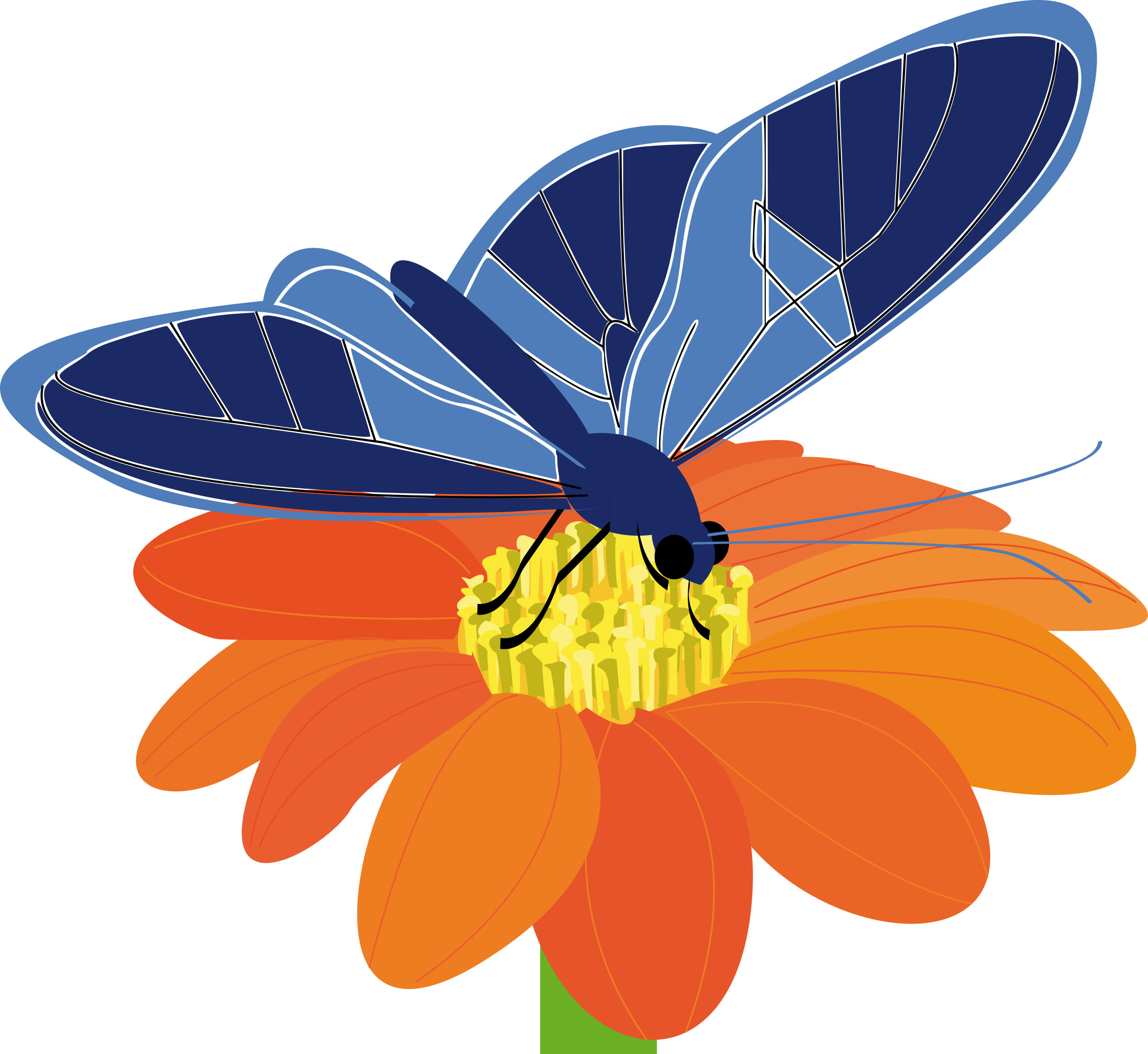 Blue Flower clipart big flower On butterfly Clipart presquesage a