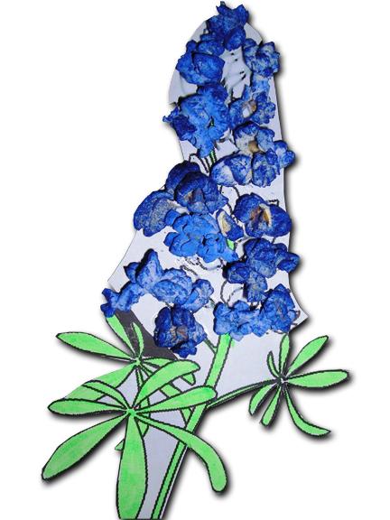 Blue Flower clipart book Clipart  Resolution Petal Bluebonnet