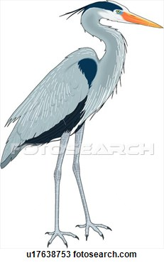 Heron clipart Art Great Clip Tiere Blue