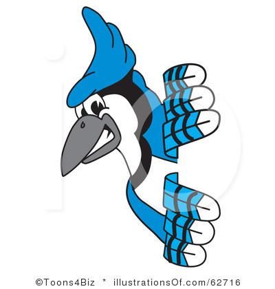 Blue Jay clipart Clipart Clip Jay Clipart Free
