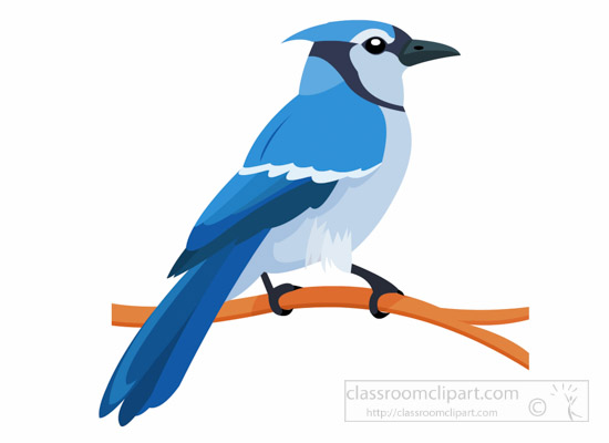 Blue Jay clipart Branch clipart bird About All