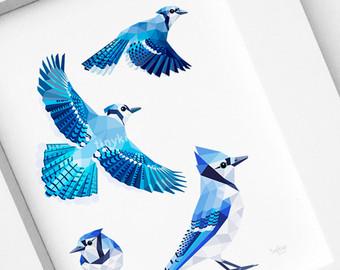 Blue Jay clipart bird face Feathers feather Blue art Jay