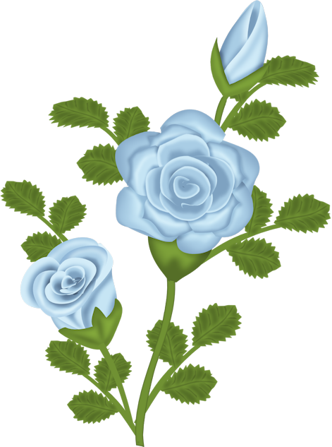Blue Rose clipart  Transparent Gallery Free Rose
