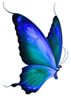 Blue Rose clipart side  Green Butterfly Clip and