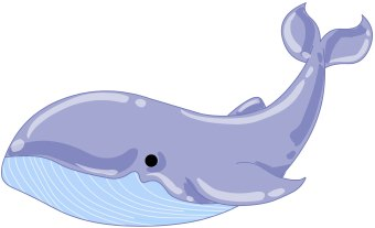 Blue Whale clipart whale watching Panda Free Images Whale Clipart