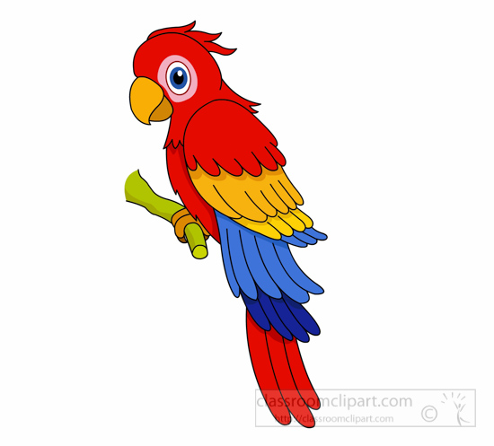 Blue-and-yellow Macaw clipart #5