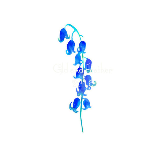 Bluebell clipart Painted Clipart Iris Image Instant
