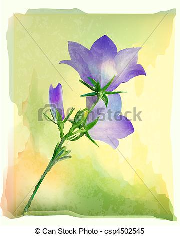 Bluebell clipart Csp4502545 of Search flower Vector