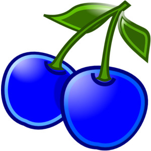 Blueberry clipart blackberry fruit Clipart  Blueberry White Black