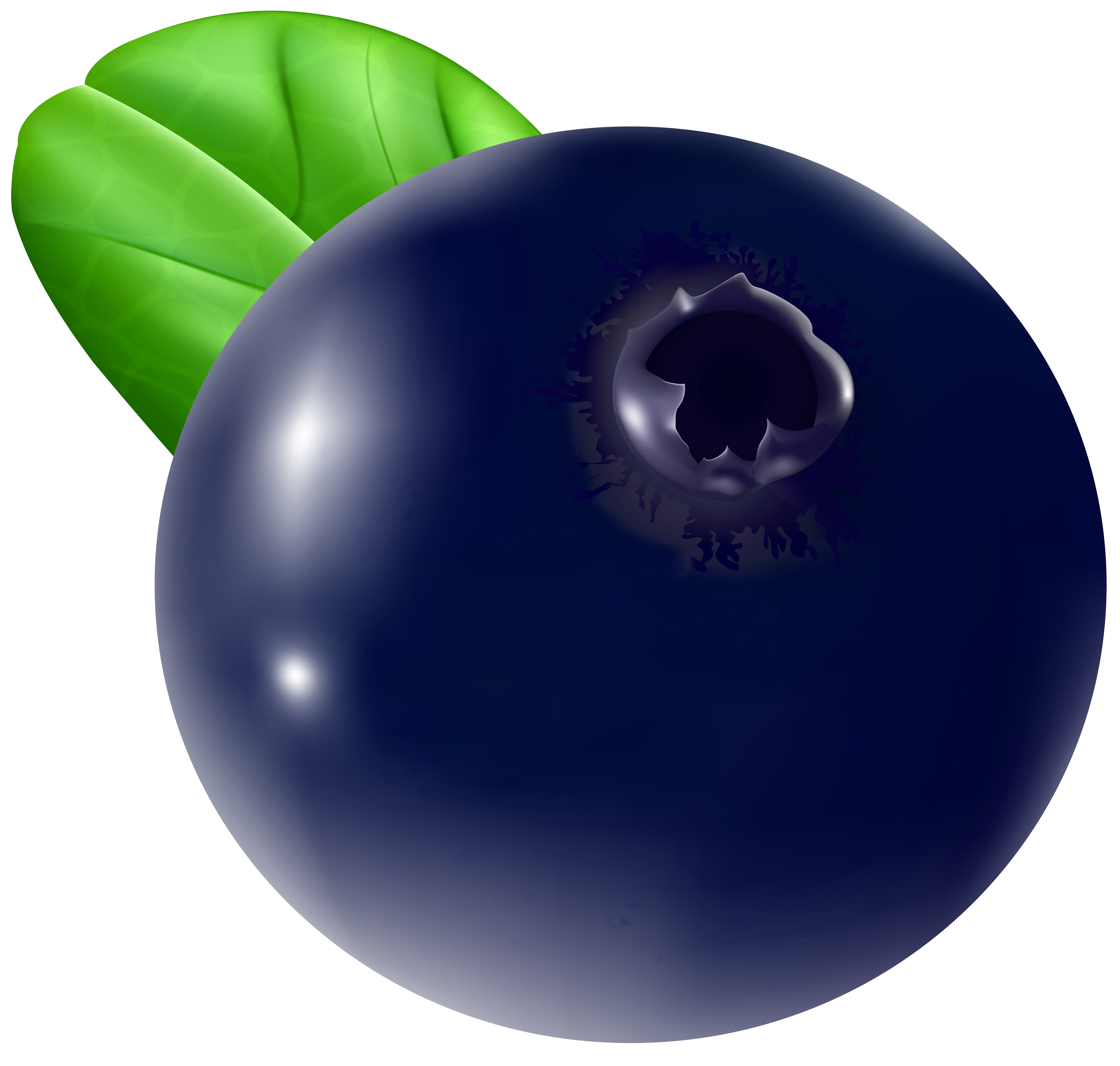 Berry clipart blueberry Clip Transparent full  PNG