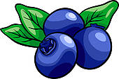 Blueberry clipart blackberry fruit Illustration Royalty Free Cake cartoon