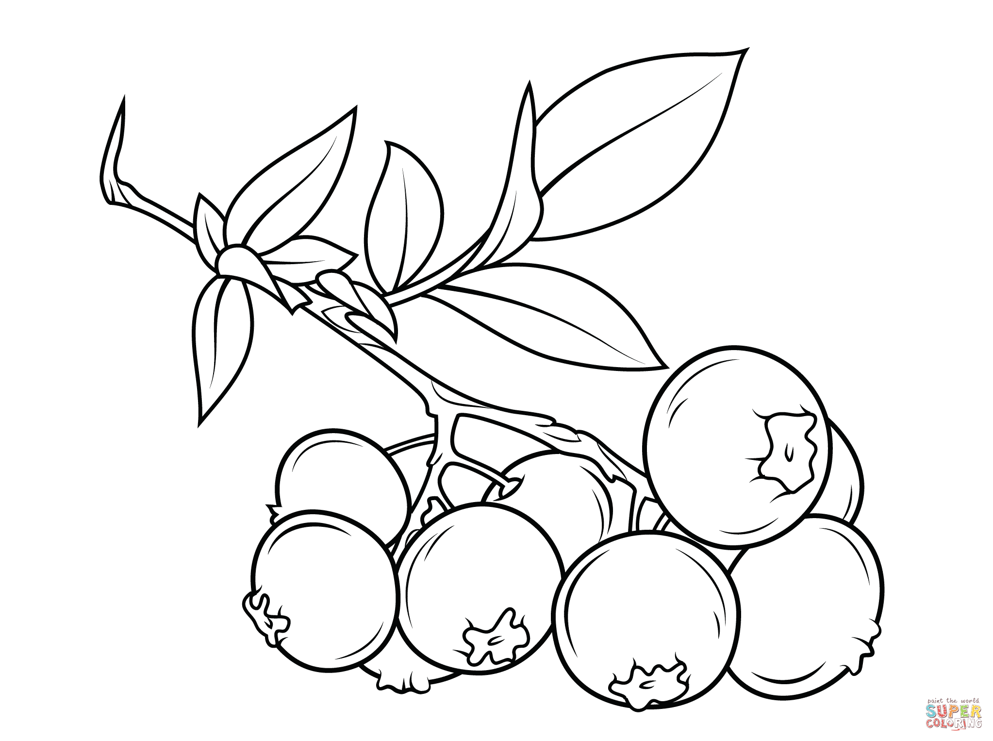 Blueberry clipart black and white The Free Printable Blueberry branch