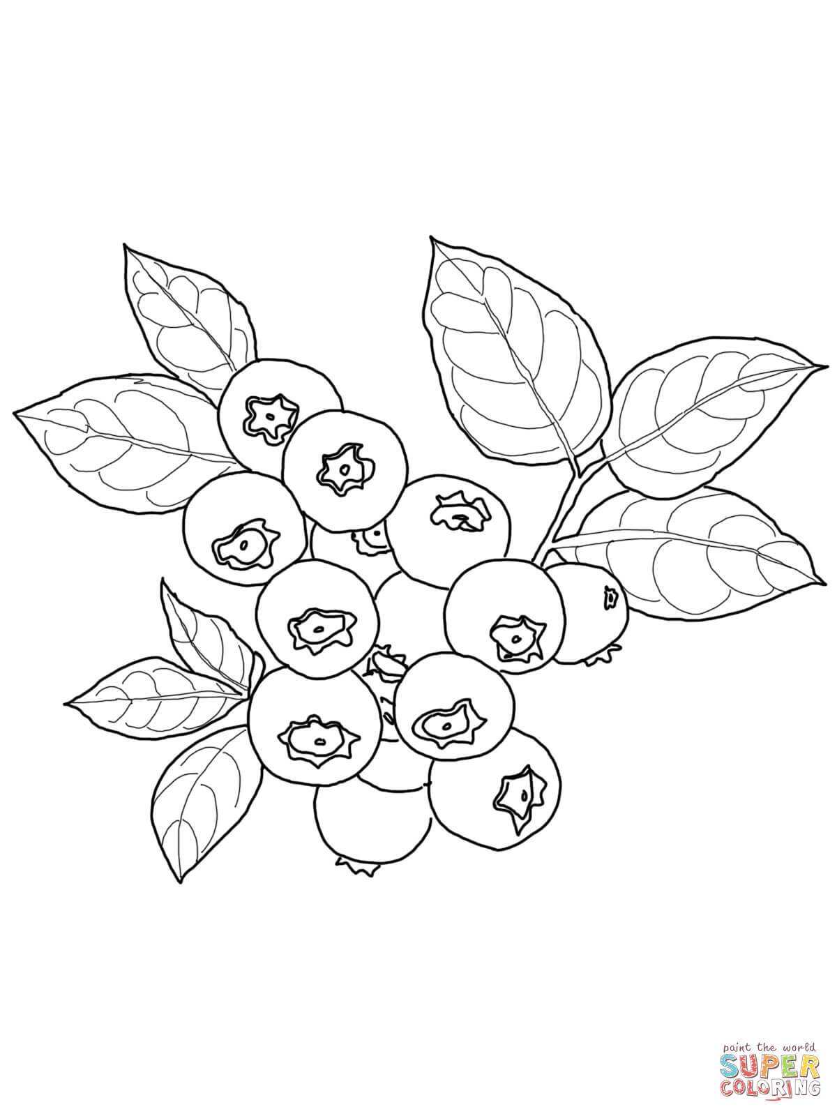 Blueberry clipart black and white Coloring Kids collection fruit pages