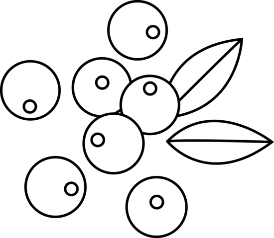 Blueberry clipart black and white And of Art Berries White