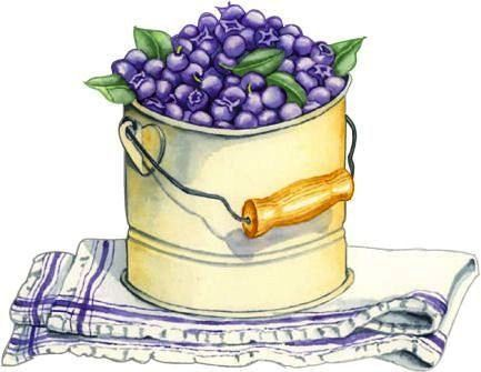 Blueberry clipart bucket On best images Cute 189