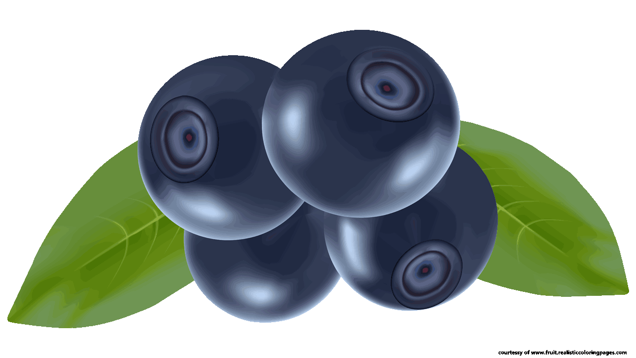 Blueberry clipart cute fruit Collection Blueberry Fascinating blueberry Clipart