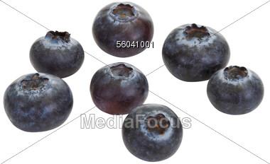 Blueberry clipart fresh Fresh  Photo 56041001 Image