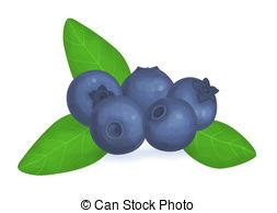 Blueberry clipart fresh 487 5  Art blueberries