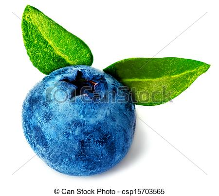 Blueberry clipart single Single Blueberry Clipart